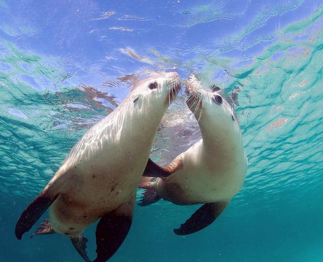 Australia – 10 increíbles fotos de su naturaleza