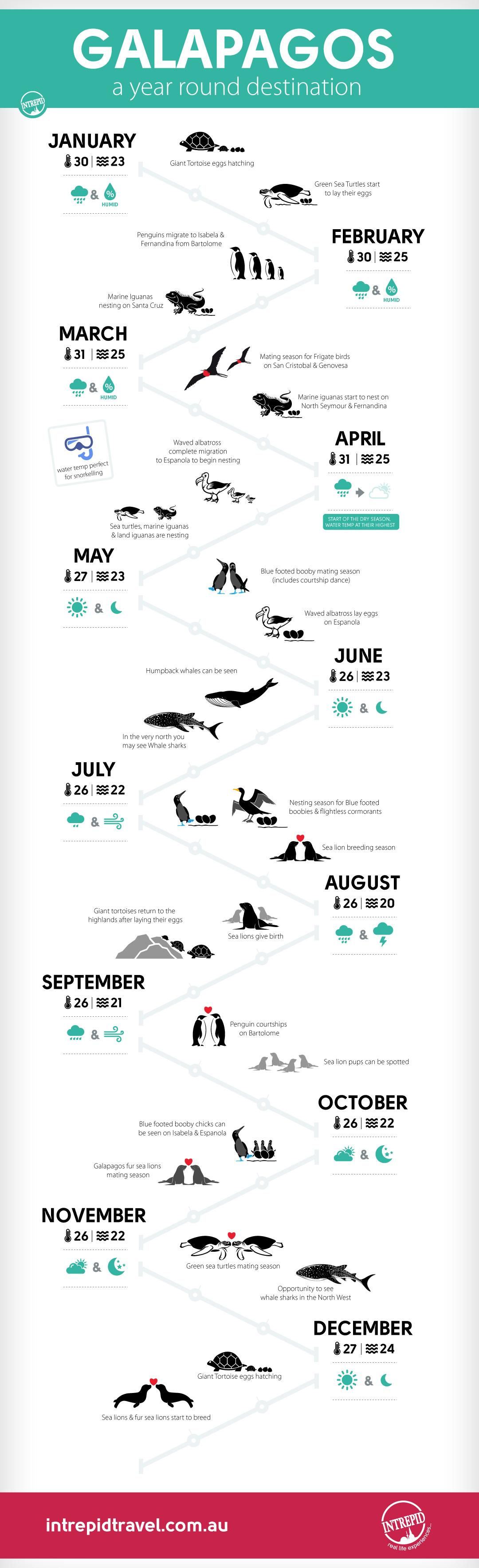 Islas Galápagos - Infografía