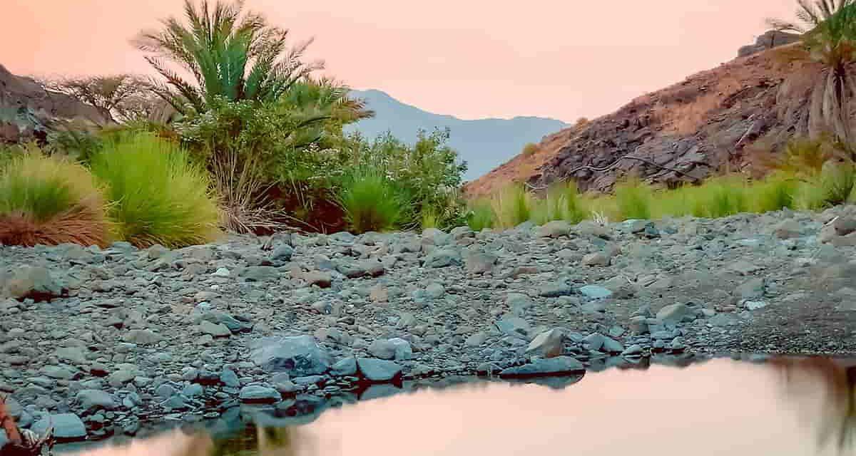 Omán, tierra ancestral bendecida por el incienso